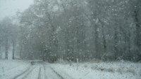 Neige sur les hauteurs de Scy (commune de Hamois) 008.JPG