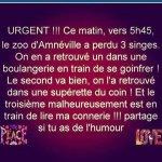 FB_IMG_1575129607324.jpg