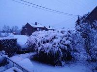 Photo de chez moi prise ce matin à 8h15 .jpg